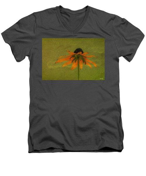 Alice's Dream Men's V-Neck T-Shirt