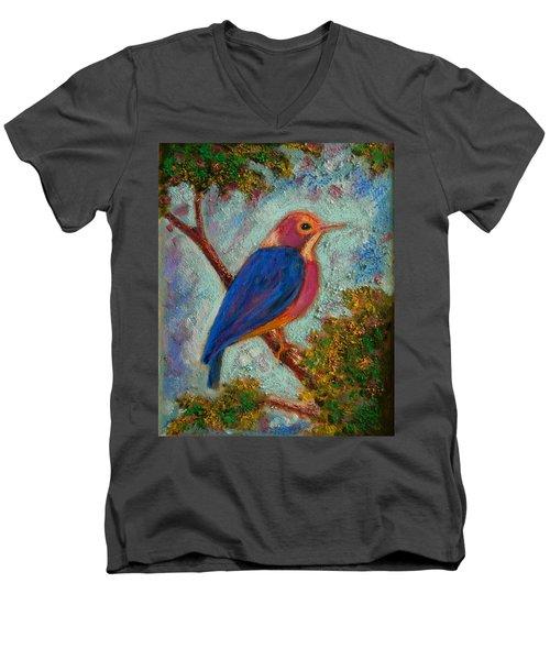 Alkion Men's V-Neck T-Shirt