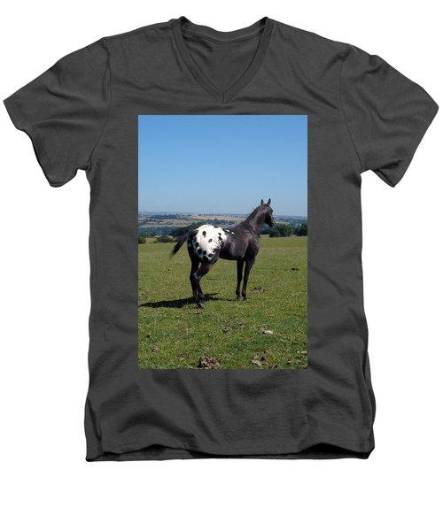 All He Surveys Men's V-Neck T-Shirt