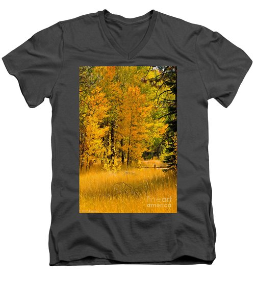 All The Soft Places To Fall Men's V-Neck T-Shirt