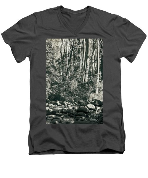 Men's V-Neck T-Shirt featuring the photograph All Was Tranquil by Linda Lees