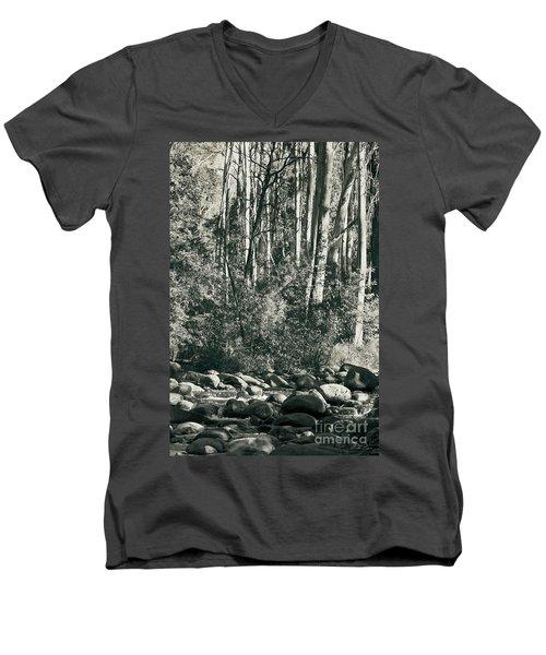 All Was Tranquil Men's V-Neck T-Shirt