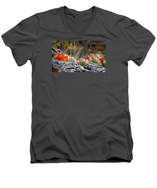 Men's V-Neck T-Shirt featuring the photograph All We Need by David Norman