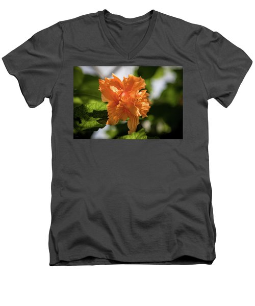 Allan Gardens Orange Men's V-Neck T-Shirt