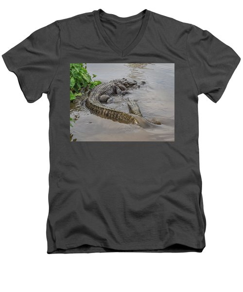 Alligators Courting Men's V-Neck T-Shirt