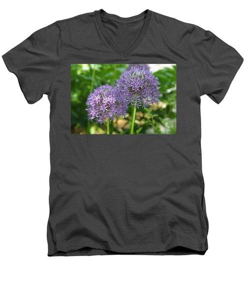 Allium Men's V-Neck T-Shirt