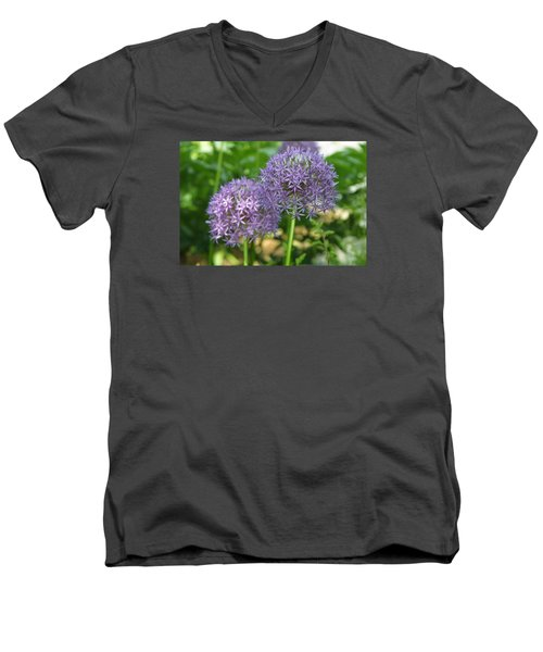 Allium Men's V-Neck T-Shirt