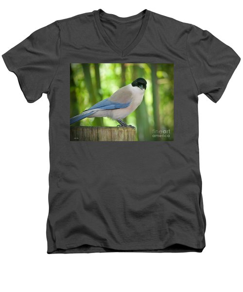 Allure Men's V-Neck T-Shirt by Judy Kay