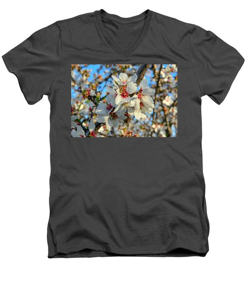 Almond Blossoms Men's V-Neck T-Shirt