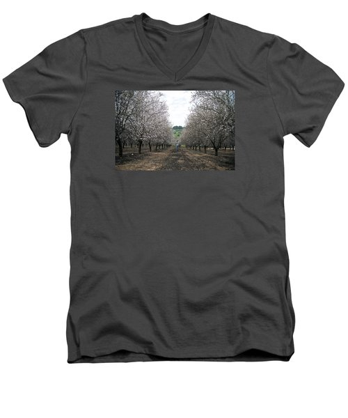 Men's V-Neck T-Shirt featuring the photograph Almonds Of Lachish by Dubi Roman