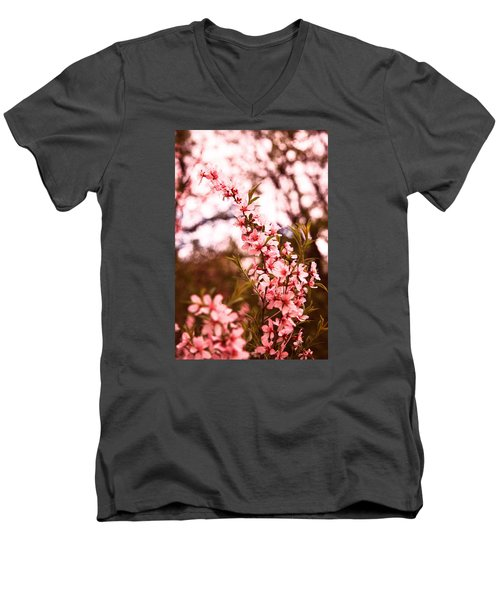 Almonds1 Men's V-Neck T-Shirt