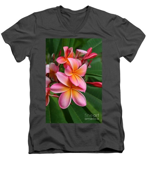 Aloha Lei Pua Melia Keanae Men's V-Neck T-Shirt by Sharon Mau