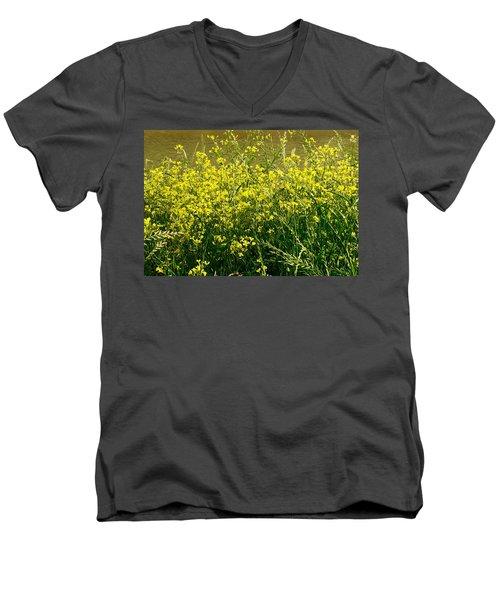 Along The Byou Men's V-Neck T-Shirt