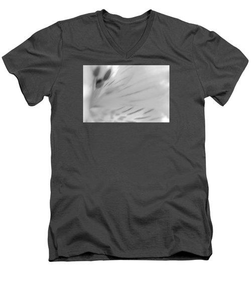 Alosteria 11 Men's V-Neck T-Shirt by Simone Ochrym