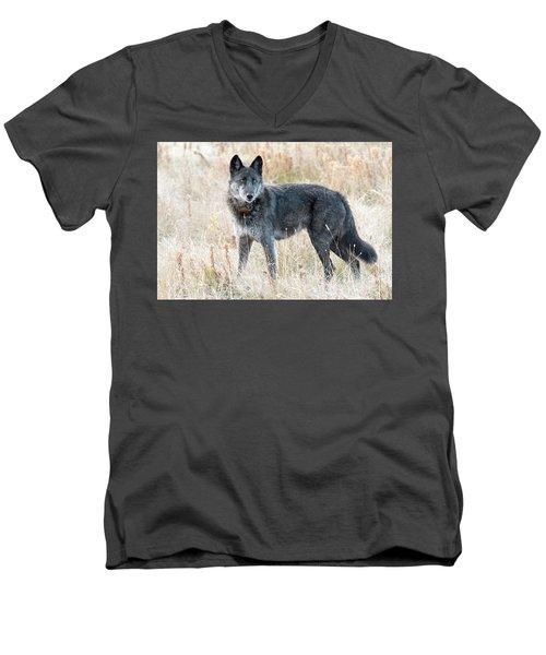 Alpha Female Men's V-Neck T-Shirt