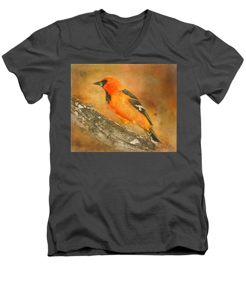 Men's V-Neck T-Shirt featuring the photograph Altamira Oriole by Bellesouth Studio