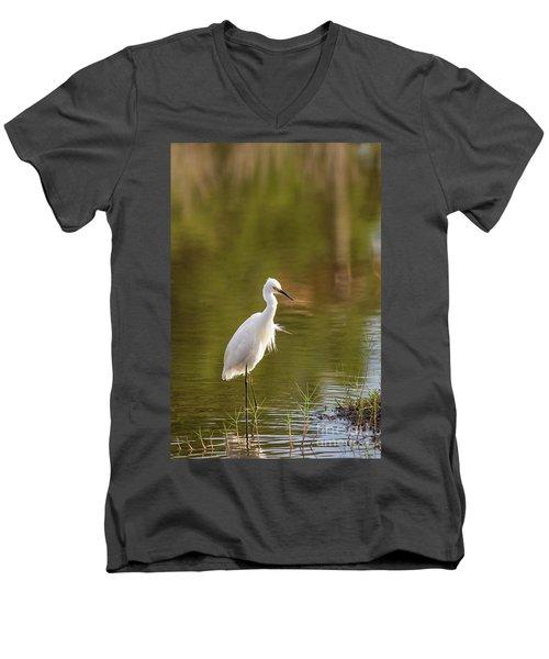 Always Watching Men's V-Neck T-Shirt