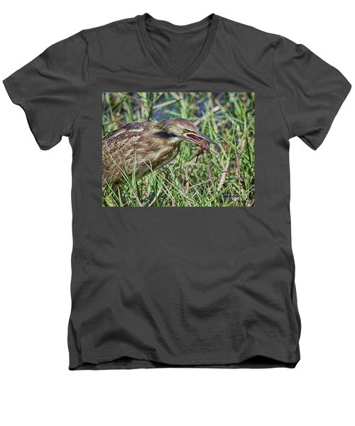 Am Bittern And Crayfish Men's V-Neck T-Shirt