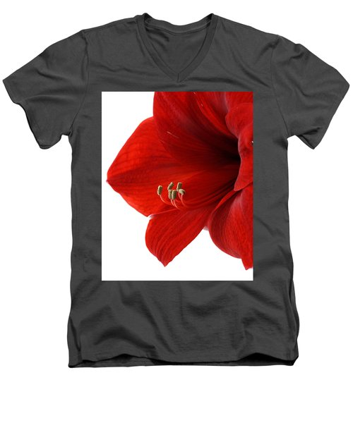 Amaryllis On White 3 Men's V-Neck T-Shirt