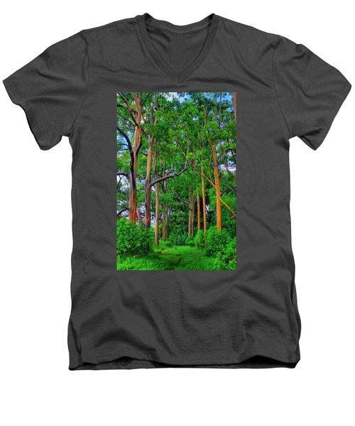 Amazing Rainbow Eucalyptus Men's V-Neck T-Shirt