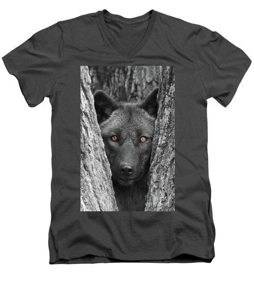 Amber Men's V-Neck T-Shirt