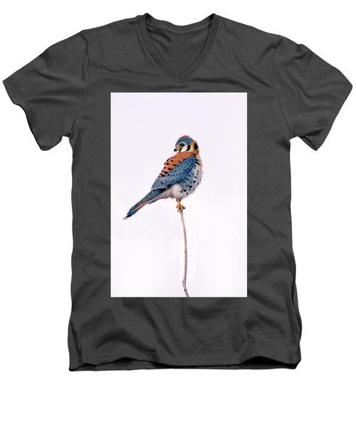 Amercian Kestrel Men's V-Neck T-Shirt