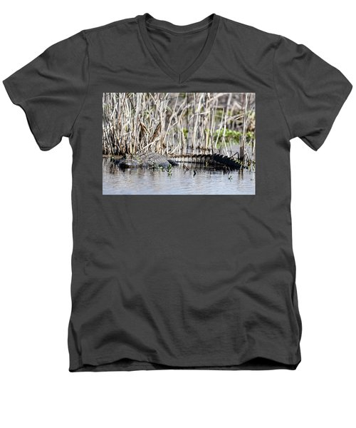 American Alligator Men's V-Neck T-Shirt by Gary Wightman