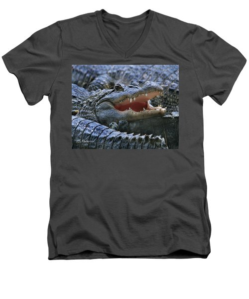 American Alligators Men's V-Neck T-Shirt