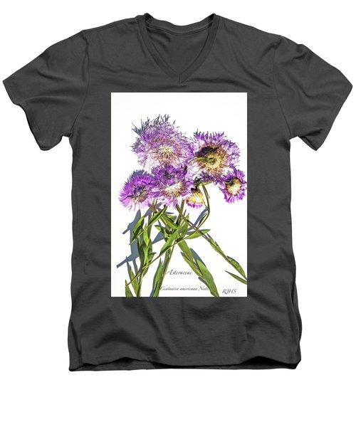 American Basket Flower Men's V-Neck T-Shirt