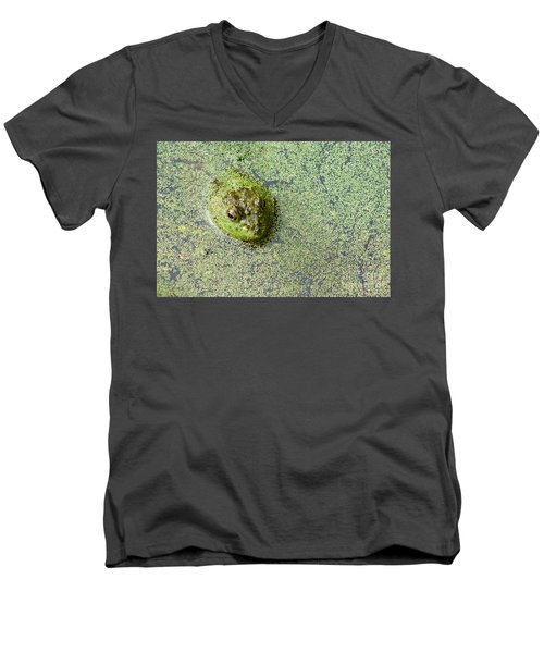American Bullfrog Men's V-Neck T-Shirt by Sean Griffin