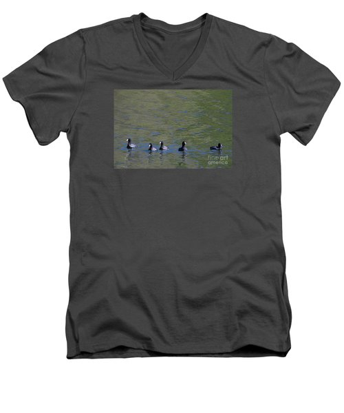 Men's V-Neck T-Shirt featuring the photograph American Coots 20120405_280a by Tina Hopkins