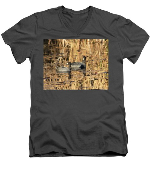 American Coots Men's V-Neck T-Shirt by Jerry Battle