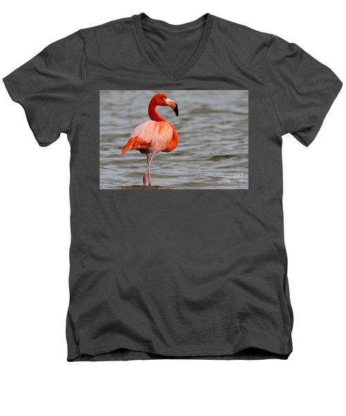 American Flamingo Men's V-Neck T-Shirt