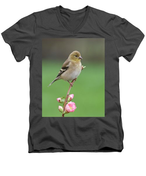 Men's V-Neck T-Shirt featuring the photograph American Goldfinch by Doug Herr
