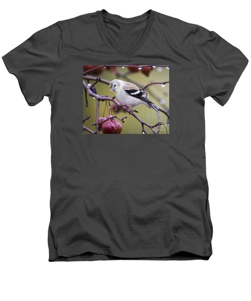 American Goldfinch In The Rain Men's V-Neck T-Shirt