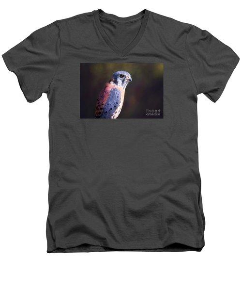 American Kestrel Portrait Men's V-Neck T-Shirt