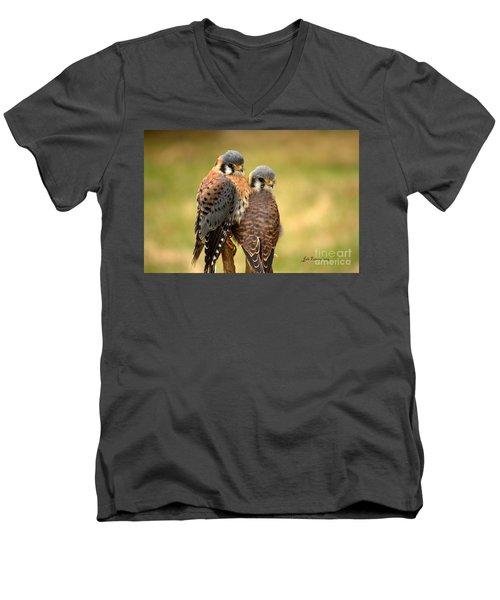American Kestrel Siblings Men's V-Neck T-Shirt