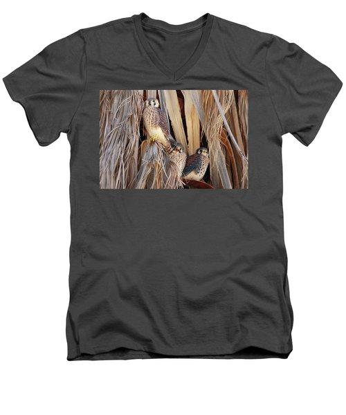 Men's V-Neck T-Shirt featuring the photograph American Kestrels by Dan Redmon