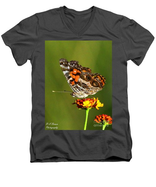 American Painted Lady Men's V-Neck T-Shirt