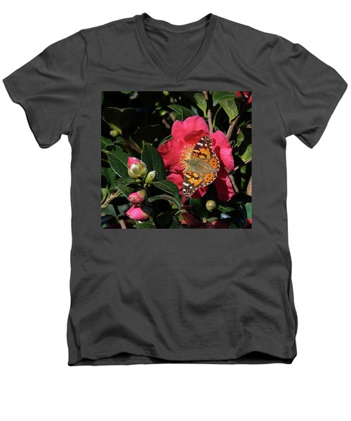 American Painted Lady On Camelia Men's V-Neck T-Shirt