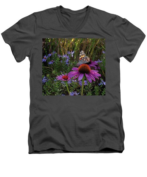American Painted Lady On Cone Flower Men's V-Neck T-Shirt