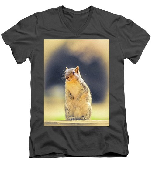 American Red Squirrel Men's V-Neck T-Shirt