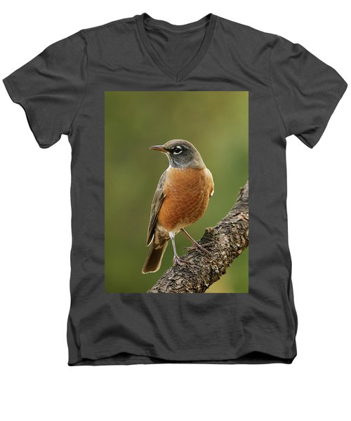 Men's V-Neck T-Shirt featuring the photograph American Robin by Doug Herr