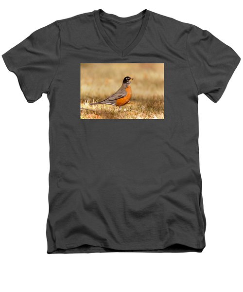Men's V-Neck T-Shirt featuring the photograph American Robin by Ram Vasudev