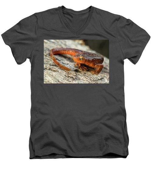 Amphibious Men's V-Neck T-Shirt by Scott Warner
