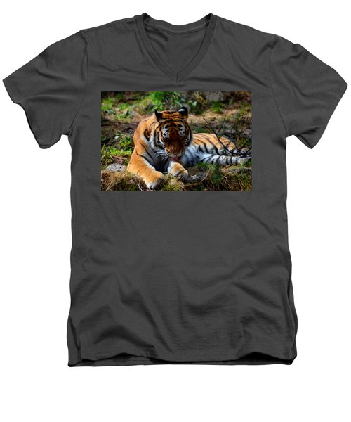 Men's V-Neck T-Shirt featuring the mixed media Amur Tiger 2 by Angelina Vick