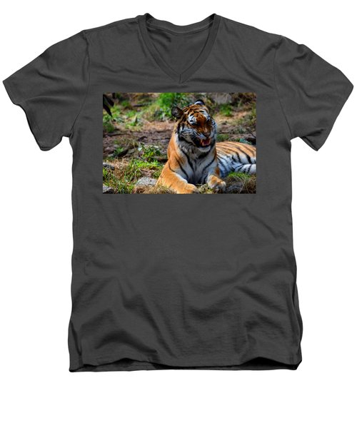 Men's V-Neck T-Shirt featuring the mixed media Amur Tiger 3 by Angelina Vick