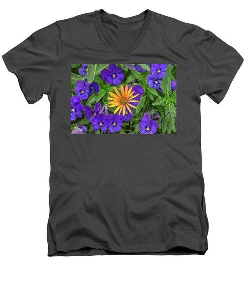 An Aureole Of Sublime Beauty Men's V-Neck T-Shirt