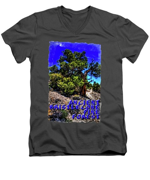 Ancient Bristlecone Pine Tree Men's V-Neck T-Shirt
