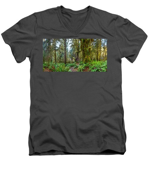 Ancient Forest Panorama Men's V-Neck T-Shirt